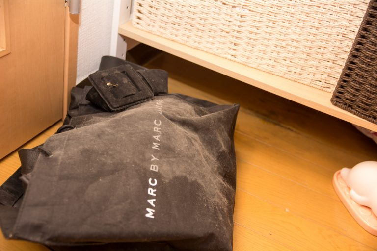 カビで覆われたトートバッグ